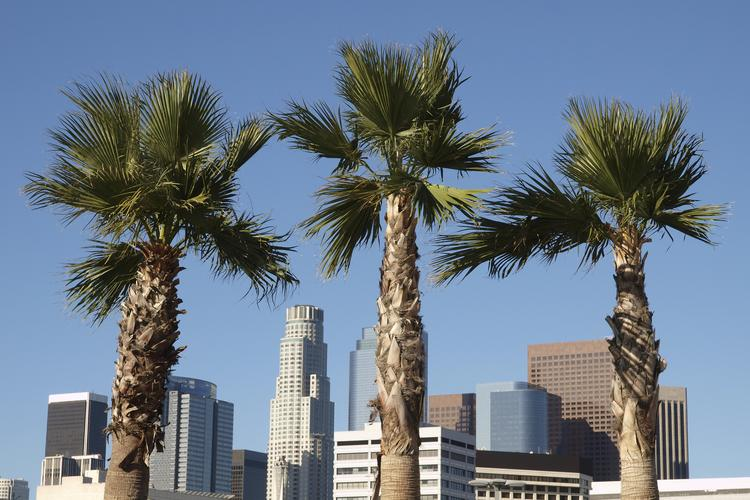 It'll be easier to get to Los Angeles with more direct flights from Port Columbus.