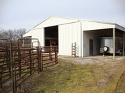 23863-116ac East Camp Creek Road: The property features a horse barn with nine stalls.