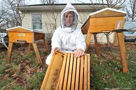 Larry Marling, who runs Eco Honeybees with wife Karen, says hives can start off with 5,000 bees in the spring. By the end of the season, that number can grow to 60,000 bees.