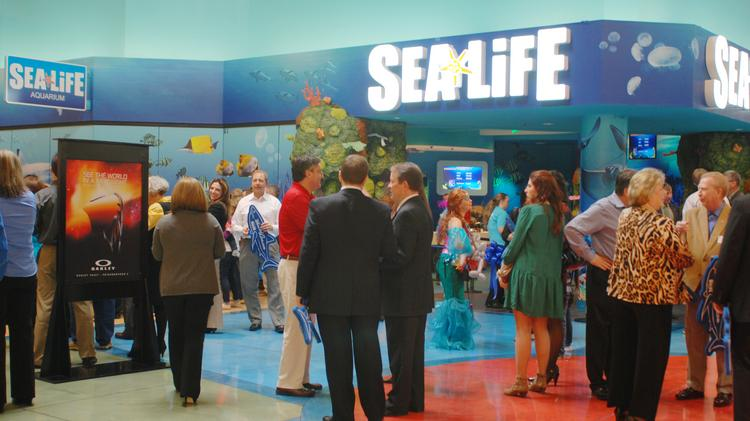 Sea life opens concord aquarium with talk of tourism jobs Concord mills mall aquarium