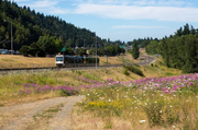 13) Gateway Green: $123,880 - 124% of goal  Funded Oct. 7, 2013 on Kickstarter in the community category.  The development of a 38-acre land parcel in East Portland into a park.