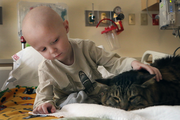 It's hard to say who is enjoying this pet therapy more, Landon Ames, a patient at Doernbecher Children's Hospital, or Huck Finn, a very mellow cat.