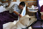 "Eddy Sanchez, who has leukemia, gets some pet therapy from Rogan at Randall Children's Hospital. ""I would love to give him a treat,"" the 15-year-old said."