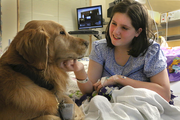 "Sammy Thorp, who is 15 and just diagnosed with Type I diabetes, enjoys some quality time with Parker, who was happy to jump up on her bed at Doernbecher Children's Hospital. ""Her face lighted up when they said, 'We have a dog,'"" said her mom Judy Slater. Sammy misses her dog, two cats and five chickens at home. ""I haven't seen her smile this much since she's been here,"" Slater said of her daughter. Said Parker's owner, Dan McFarling, ""When I hear things like that, it makes my day."""