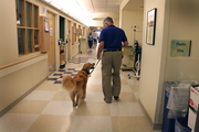 Dan McFarling walks his golden retriever Parker down the hallway of the pediatric inpatient care unit at Doernbecher Children's Hospital en route to find children who would like a dose of pet therapy. He usually sees about 20 kids in a two-hour period. It's hard for the pair to walk down the corridor without pausing to visit with nurses and doctors as well.