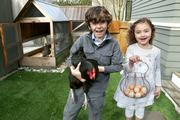 William and his sister Lucy collect eggs from the backyard chicken coop of their family's home. William is holding Robin Hood the chicken. The chicken coop was designed by Seattle artist Joshua Parke, who was also the contractor on the new black concrete wall at the Canlis restaurant and lead contractor on the family's home remodel. Mark Canlis and Parke built the coop together.