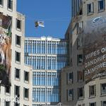 Greenpeace protesters in P&G caper sentenced