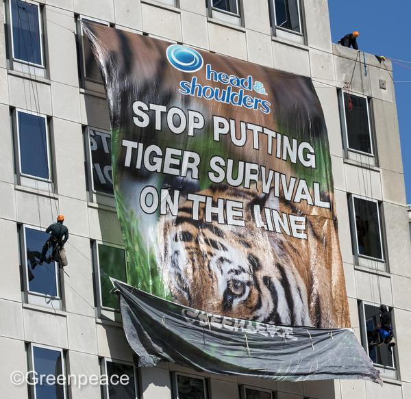Nine Greenpeace activists were involved in the caper at P&G headquarters.