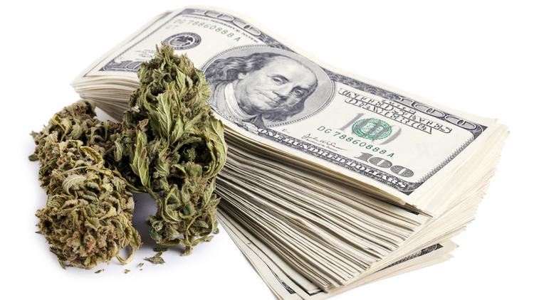 The marijuana school in Tampa is educating students on the business and financial side of the plant.