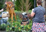 Of course, the skunk named Flower has to be front-and-center at the Flower & Garden Festival.