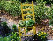 Here's another way to put a perfectly good chair to better use in the garden.