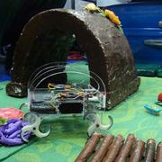 Harvard University demonstrated bio-inspired robots like this one – robots modeled after bugs.