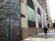 These tree paintings are displayed on the boarded-up windows of the Barnett Bank Building at the corner of Adams and Laura streets.