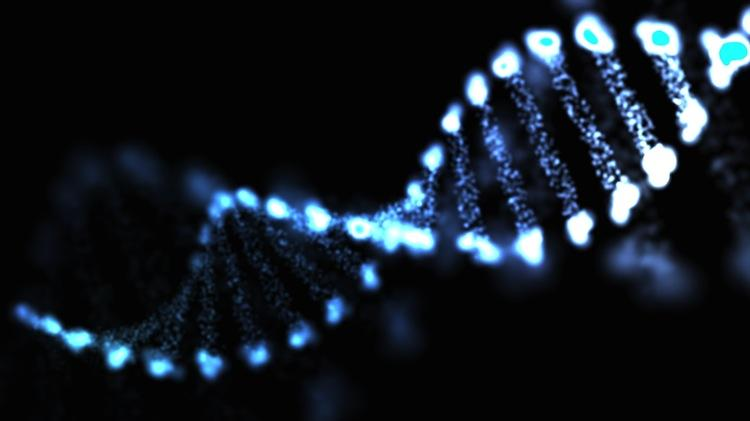 Eurofins MWG Operon Inc., which provides DNA sequencing and related services, plans to establish a headquarters site in Louisville.