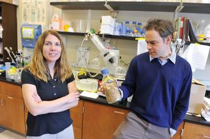 Julie Goodliffe is CEO of Sustainable Ethanol Technologies, a startup that spun off from UNC Charlotte. UNCC professor Matt Parrow is developer of the venture's process for making ethanol.