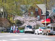 #9-35223 Percentage change: Down 9% Average price in 2007: $599,930 Average price in 2013: $545,140 City: Mountain Brook Insight: Regularly ranks as the metro's wealthiest ZIP code and has the highest average home price, as well.