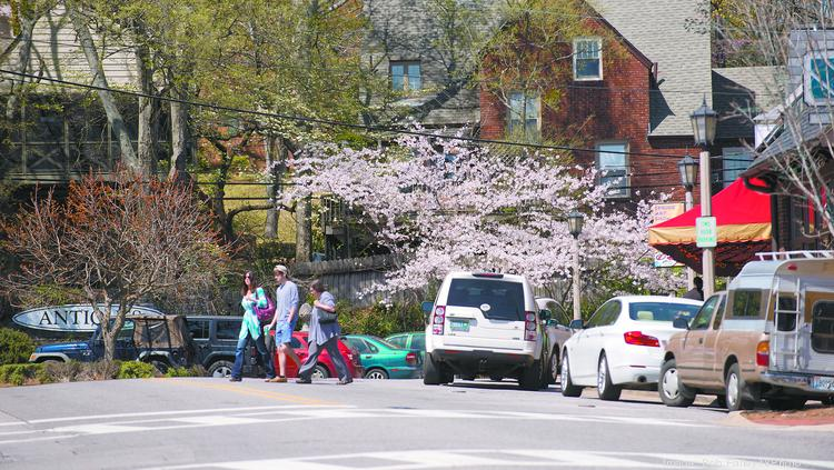 Little Hardware will replace Park Lane by Kathy G. in Mountain Brook.