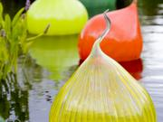 The Denver Botanic Gardens' Dale Chihuly exhibition will include glass sculptures floating on the water.