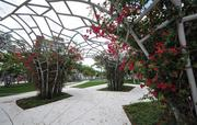 The New World Symphony SoundScape Garden is a key amenity to the south of the convention center.