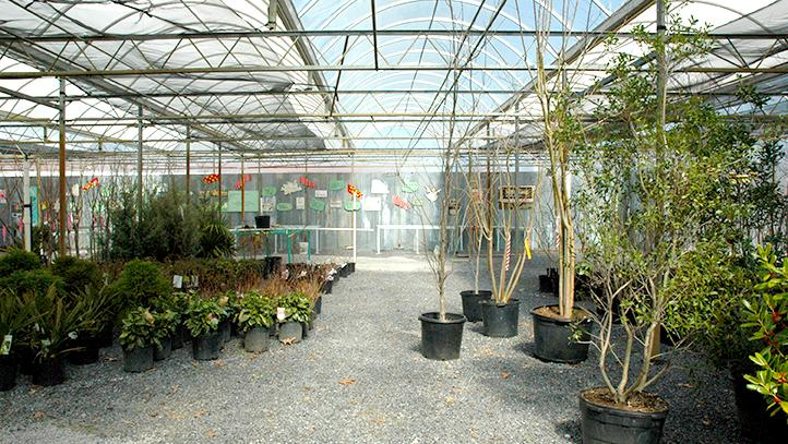 Gentil Urban Earth, A New Retail Garden Center Near Midtown Memphis, Will Include  A Commercial