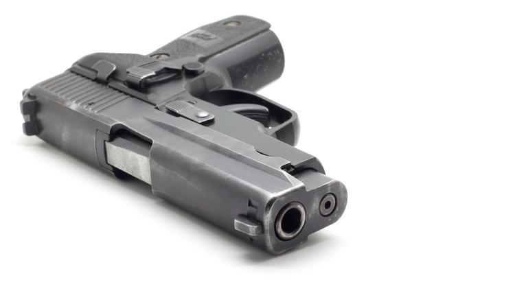 A national gun control group is challenging the The Second Amendment Protection Act –a Kansas law that was passed in April 2013.