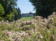 The city paid $5 million for the Colwood Golf Course and surrounding land i the Cully neighborhood.