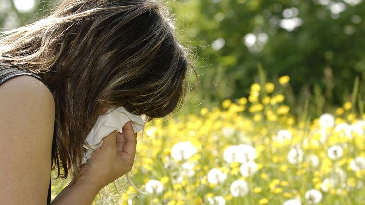 Dallas ranked seventh in the nation for worst allergies. Louisville took first.