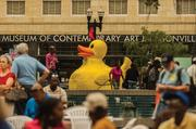 As part of the One Spark Festival, a large Yellow Duck floated in the water gardens at Hemming Plaza.