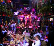 Mango's Tropical Cafe features Latin cuisine and live entertainment.