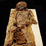 Buffalo Science Museum seeks answer to age-old mummy question