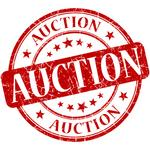 Boca Raton hotel in bankruptcy auction, <strong>Dvorkin</strong> submits bid