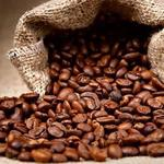 Kaldi's opening roasting facility in Forest Park Southeast