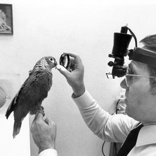 Dr. Charles Bonney was San Antonio's only animal eye specialist in 1988.
