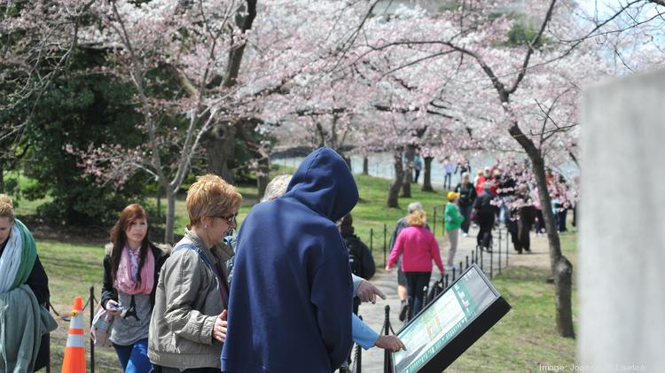 Visitors read one of the several placards placed the Tidal Basin during the cherry blossom festival, a major tourist draw for D.C. Record numbers of domestic tourists came to D.C. that year, while international tourism dropped slightly.