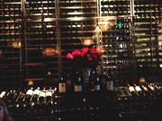 The Capital Grille's new location features an award-winning wine list with more than 500 new and old world selections, as well as brass-plated personal wine lockers available for lease.