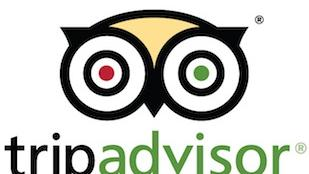 Newton-based TripAdvisor plans to hire 50 engineers in Dublin over the next two years.