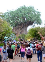 The crowd makes its way to the Tree of Life for the 15th anniversary opening ceremony.