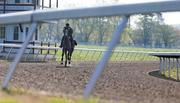 Water Tower, a three-year-old gray mare, takes a practice run on Monday at Sagamore Farm.