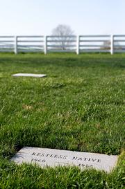 Restless Native, the son of Hall of Fame horse Native Dancer, is buried at Sagamore Farm.
