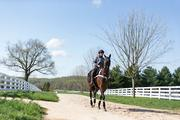 We Will takes a stroll on Monday at Sagamore Farm, the Baltimore County breeding farm owned by Under Armour CEO Kevin Plank.