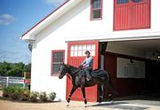 Since acquiring Sagamore Farm in 2007, Kevin Plank has worked to restore the 530-acre property.