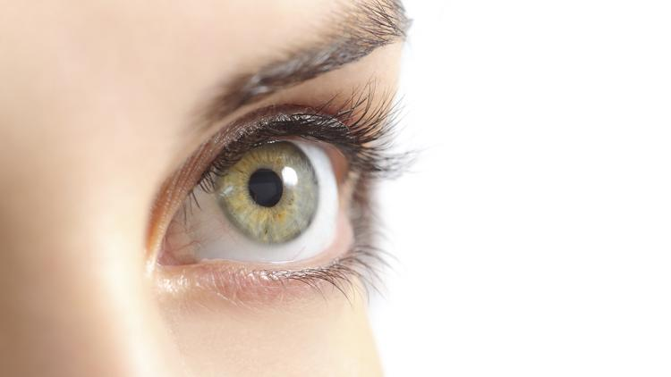 Ocular Systems Inc. of Winston-Salem has been acquired by Seattle-based SightLife in a move expected to boost efforts to combat corneal blindness.