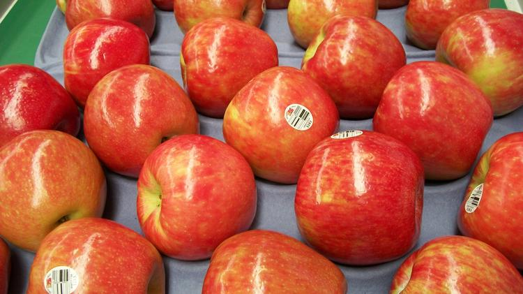 Honeycrisp apples are now available through most of the winter from domestic growers, but a new import deal could make them a year-round favorite.