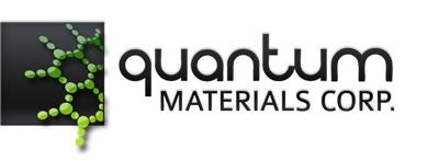 The company is in the development-stage nanotechnology and advanced materials business.