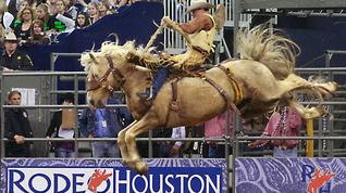 10 questions: How well do you know Rodeo Houston?
