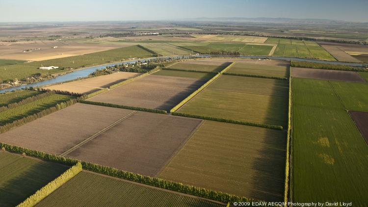 The California Supreme Court has agreed to decide whether the state has the right to acquire land in the Sacramento-San Joaquin Delta through eminent domain so it can begin testing two massive tunnels that would convey water southward.