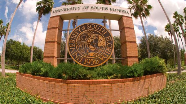 University of south florida?