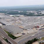 A green light for GM plant project