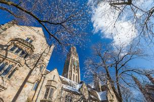 The campus as Yale University,