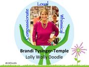 """Brandi Tysinger-Temple, Founder and CEO of Lolly Wolly Doodle in Lexington   Tysinger-Temple didn't set out to be a businesswoman.  In 2008, while using her sewing skills to make clothing for her two smallest children, she found herself with extra fabric. She made a few more outfits, set up an Ebay store and a successful business was born. Now, Lolly Wolly Doodle employs 120 people and makes 5,000 clothing items per week. More than 90 percent of her sales are driven through Facebook, where her company has 320,000 fans following the company's page.     Every holiday her """"Moms in a Jam"""" program donates money to women in need, and last year she used some of her company profits to build a water well in Africa."""